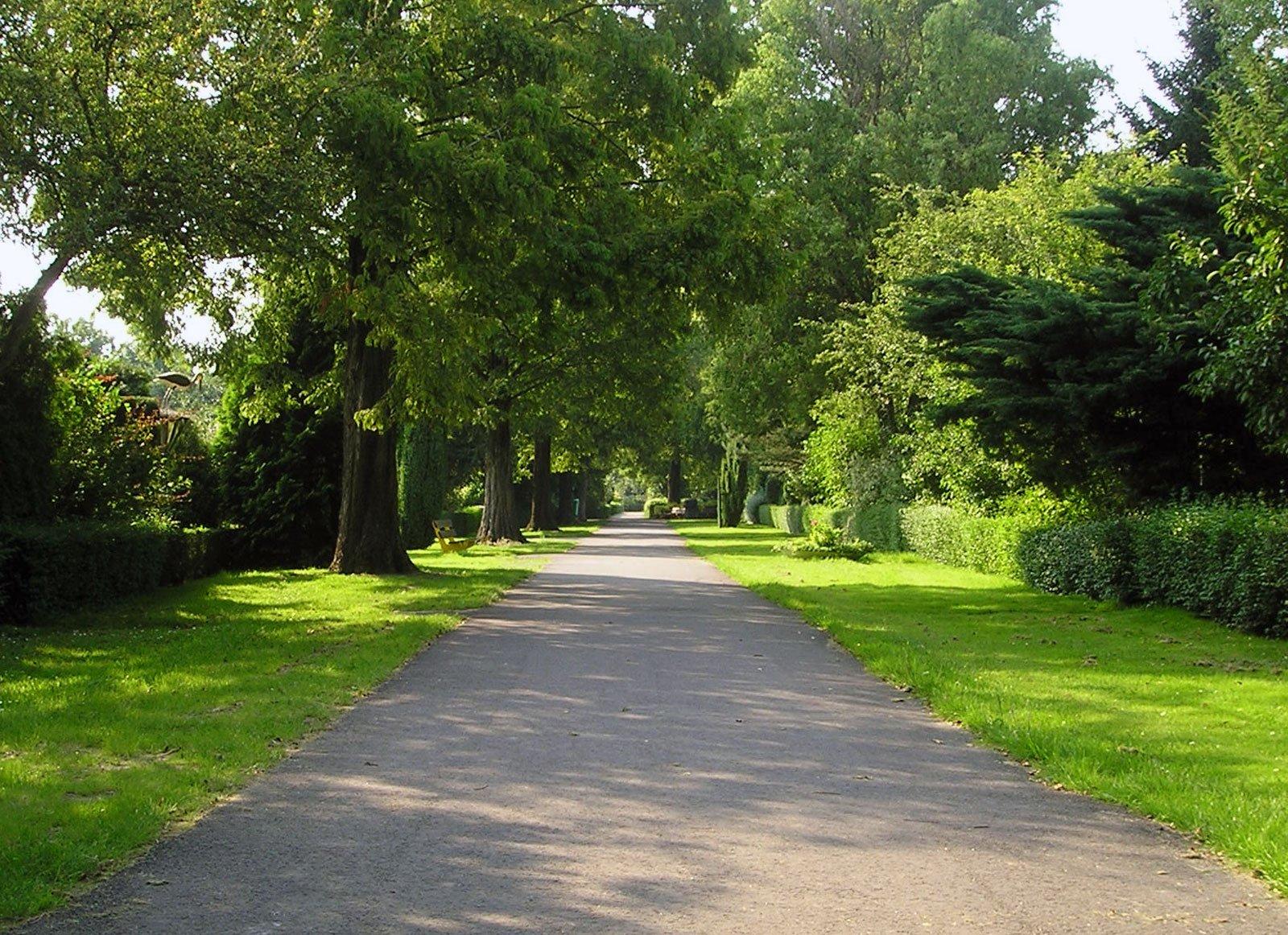 Home vtv lusthof for Tuinbladen nl